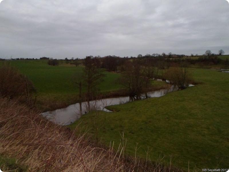 SAM_0029 River Weaver