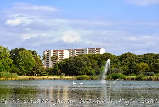 Glória Ishizaka - Jardim Botânico Nagai - Osaka 12