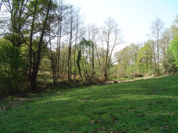 L'étroit vallon du Verdet (affluent du Gesvres) entre La Ménardais et La Loeuf