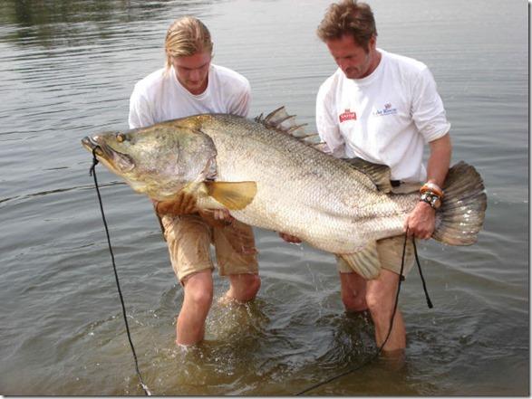 big-fish-fishing-33