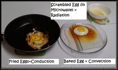 Using eggs to cook science - conduction, convection, radiation, etc. - from Raki's Rad Resources.