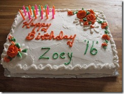 zoeys 16th 002