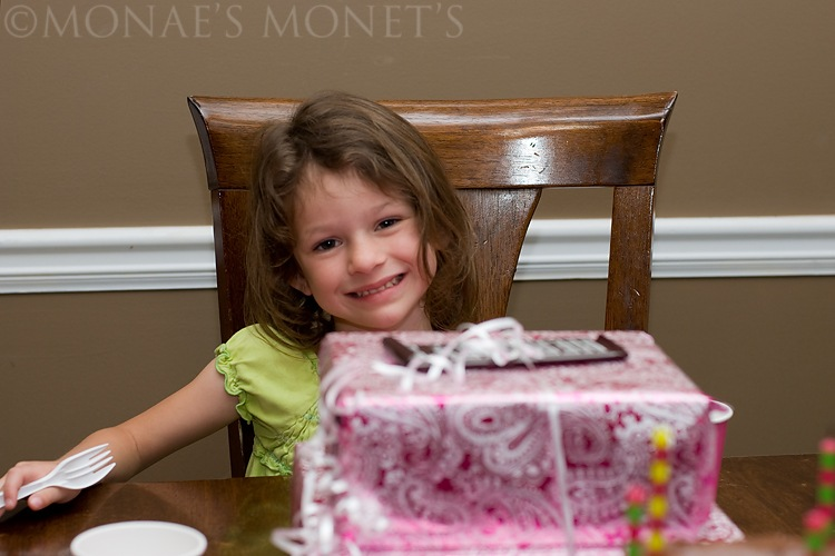 Abby 5th birthday blog