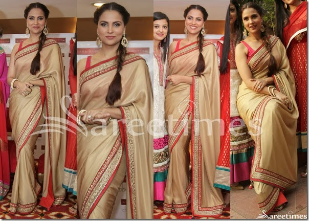 Lara_Dutta_Gold_Plain_Saree
