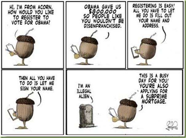acorn-voter-fraud-cartoon