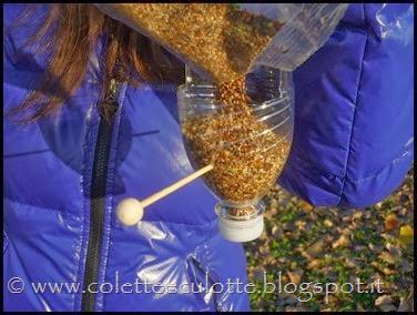 Ghiotte leccornie per gli uccellini dell'OrtoQua (30)