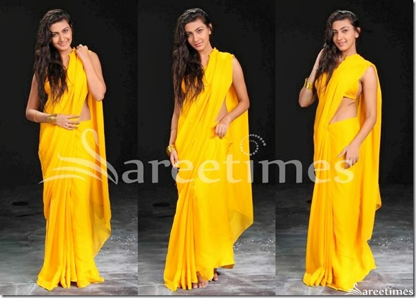 Neelam_Upadhyay_Yellow_Plain_Saree