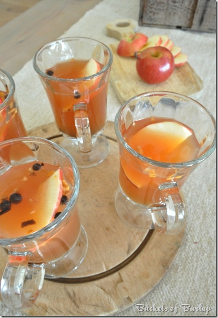 fall dining-hot apple cider