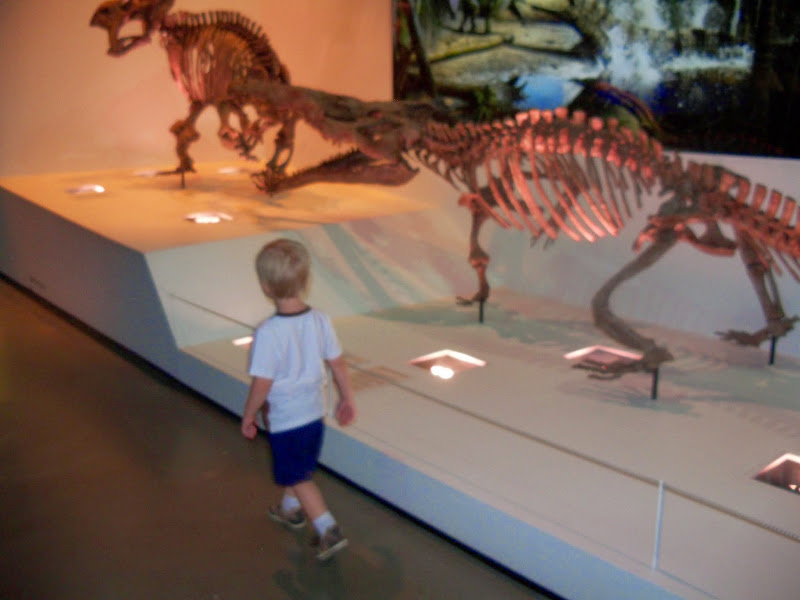 Houston Museum of Natural Science - 116_2706.JPG