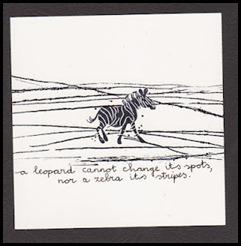 zebra 001