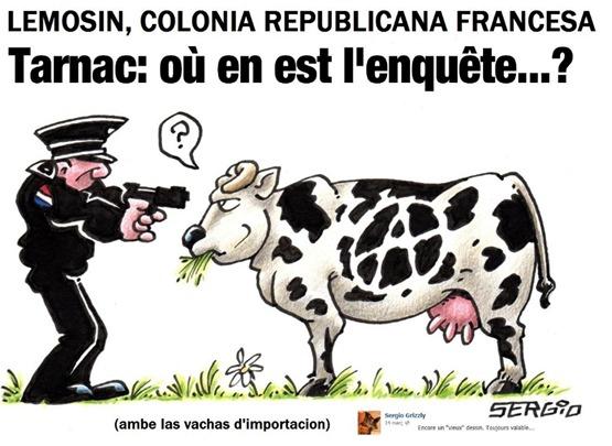 Lemosin la vaca es en colèra encara
