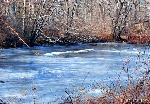 16. frozen pond-kab