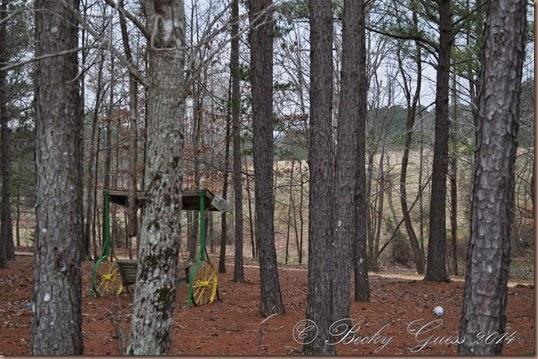 03-21-14 Little Creek RV near Collierville TN 02
