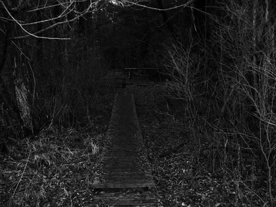 spooky.8