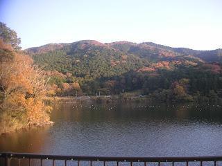 20121125-022.jpg