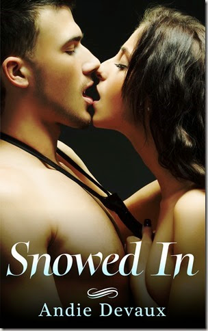 Snowed In - High Resolution_thumb[1]