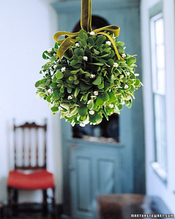 This mistletoe ball serves as a gentle reminder, amid the holiday hubbub, to take a momentary respite for romance.
