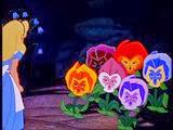 13 les fleurs qui parlent