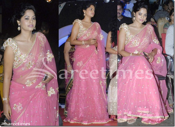 Bindu_Madhavi_Pink_Net_Saree