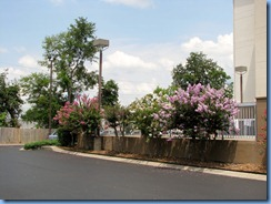 8991 State Road 155 North, Tennessee - Nashville -  Best Western Suites Opryland