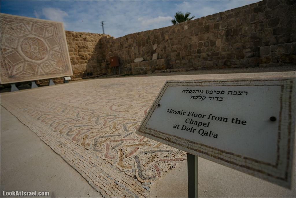 Мозаики от «Доброго самаритянина» (israel  путешествия иудея и самария и интересно и полезно выставки музеи фестивали  20130215 good samaritan mosaic 012 5D3 8338)