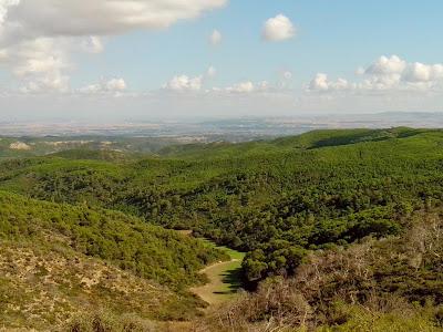 Ruta del bosque y el fuego Zuera vista monte alto