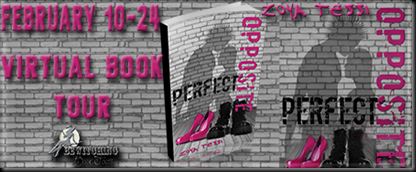 Perfect Opposite Banner 450 x 169