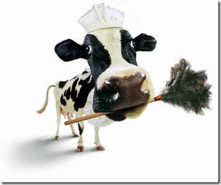 fotos animales divertidas patatitasylimones (10)