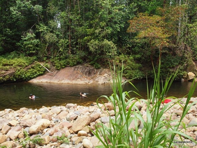 river_in_sarawak_18