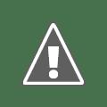 Middle School Science Fair