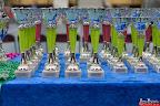20130511-BMCN-Bullmastiff-Championship-Clubmatch-1476.jpg