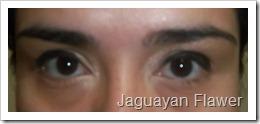Look LV 2012 (9)