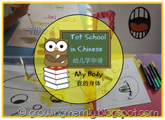 Tot School in Chinese - My Body