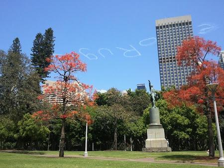 Imagini Sydney: Ultimele imagini inainte de intoarcerea spre casa
