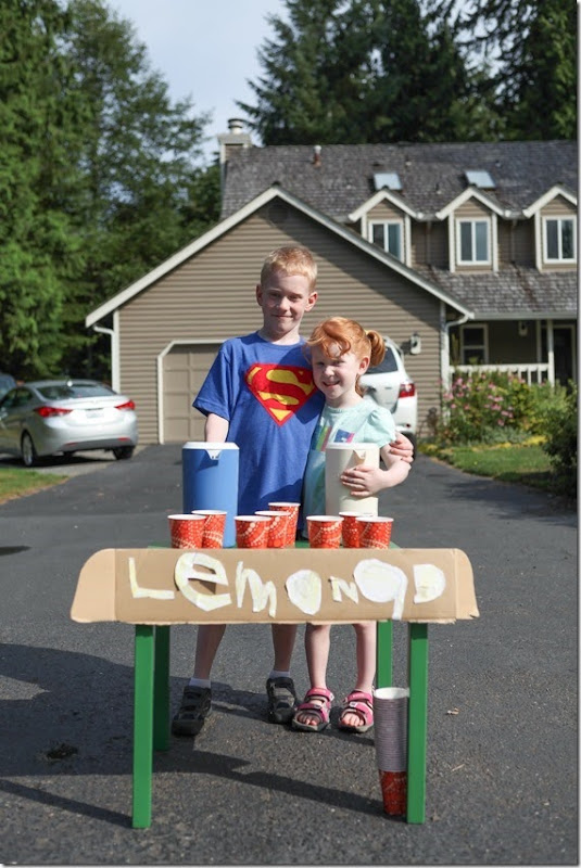 Lemonade stand (7)-small
