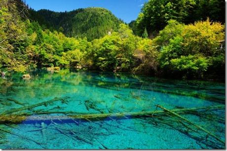 Five-Flower-Lake-China
