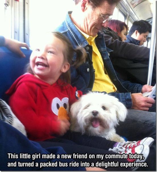 dog-mans-best-friend-5