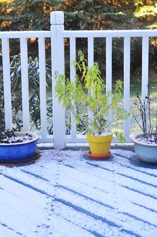 first_snow_2012_0