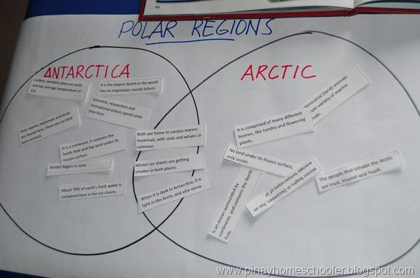 Study of the Polar Regions Sorting Activity