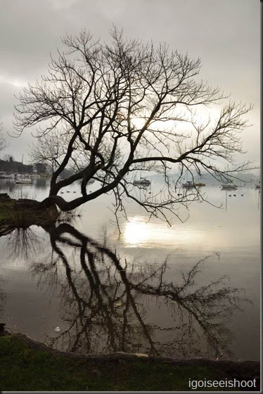 View of Lake Windermere from Borrans Park, Ambleside, Lake District
