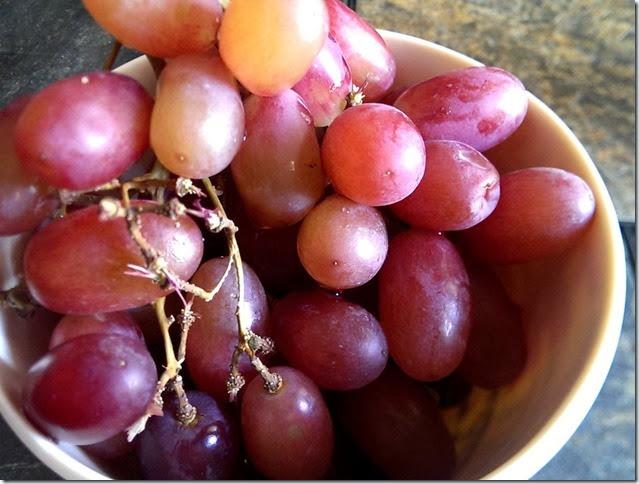 grapes-public-domain-pictures-1 (2284)