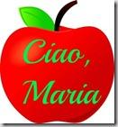 shiny_red_apple_for_teacher_0515-1007-2718-1227_SMU