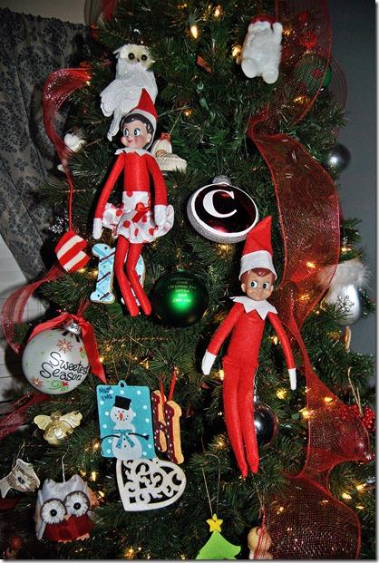 Elf on the Shelf Day 5-9 003