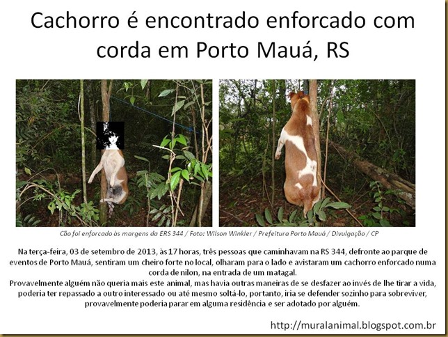 cao_enforcado
