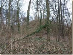 Borgworm (Waremme), Chaussée du Bois de Tombes: twee tumuli