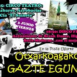 cartel gazte eguna-1.jpg