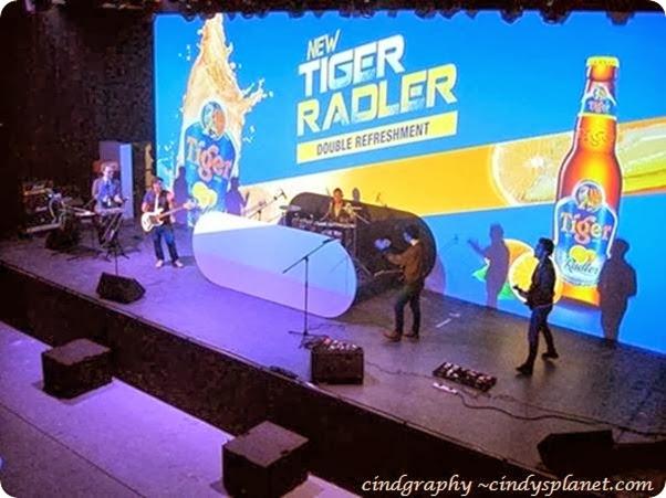 tiger radler 16