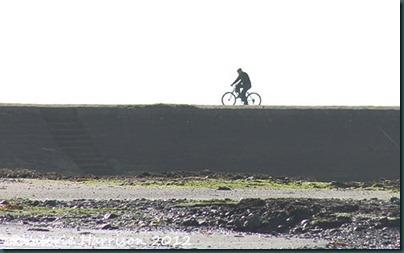 40-man-on-bike