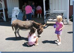 3027 Pennsylvania - Gettysburg, PA - Land of Little Horses