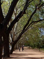 General San Martin park, Mendoza.